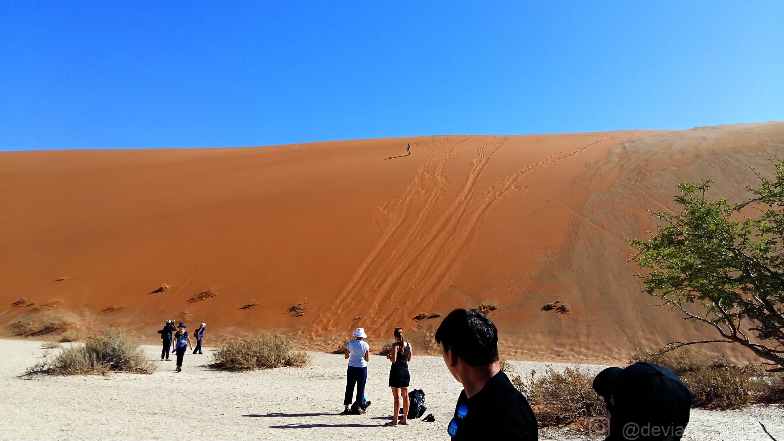 Bajando la duna